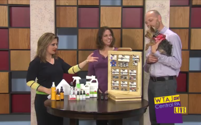 Central PA LIVE – Aromatherapy for Pets